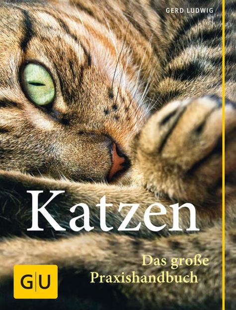 Bild zu Praxishandbuch Katzen von Ludwig, Gerd