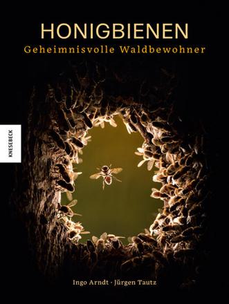 Bild zu Honigbienen - geheimnisvolle Waldbewohner von Arndt, Ingo