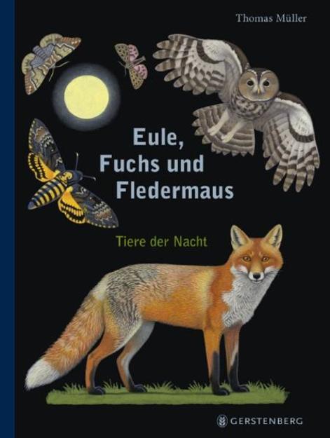 Bild zu Eule, Fuchs und Fledermaus von Müller, Thomas