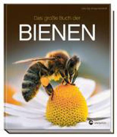 Bild zu Das große Buch der Bienen von Gay, Jutta