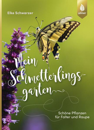 Bild zu Mein Schmetterlingsgarten von Schwarzer, Elke