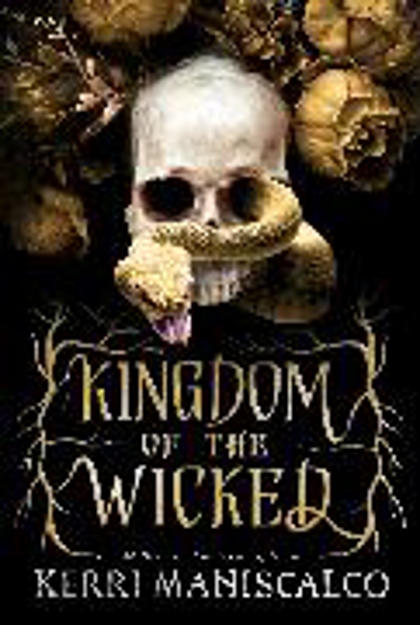 Bild zu Kingdom of the Wicked von Maniscalco, Kerri