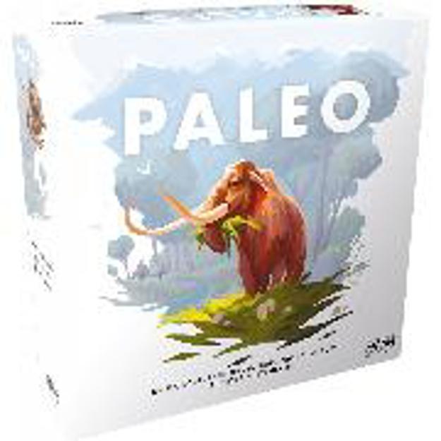 Bild zu Paleo 2-4